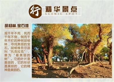 【私人定制团】-中国西北新疆喀纳斯大环线16manbext万博官方(西安接团-万博手机版登录官网出境)