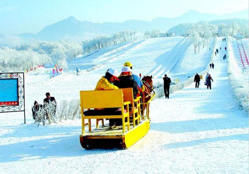 鹧鸪山门票+观光车+2小时滑雪